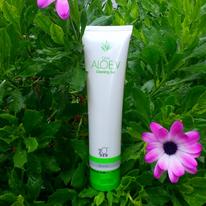SC020 DXN Aloe.V Cleansing Gel