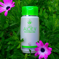 SC024 DXN Aloe.V Hand & Body Lotion