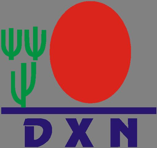 dxn dynamic start csomag A