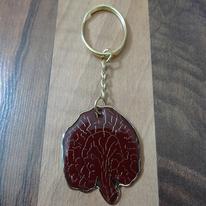 Ganoderma Porta chaves