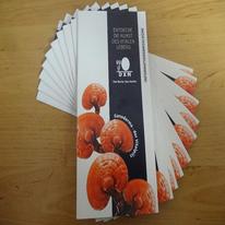 Product Brochure - DE (1set/10pcs)
